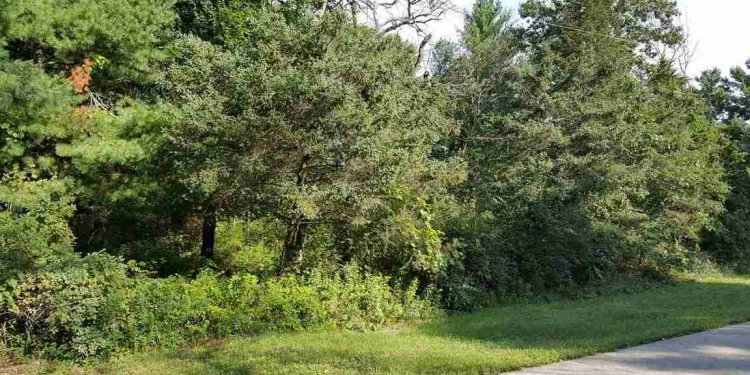 Poynette, WI Homes for Sale
