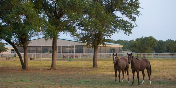 Fort Worth Ranch for sale